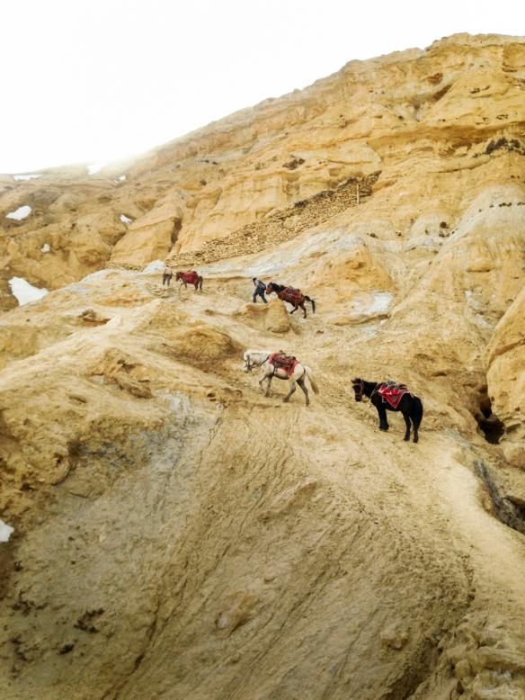 Nepal_Shilu_Samjong_130310_0402