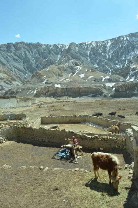 Nepal_Shilu_Samjong_130310_2-12